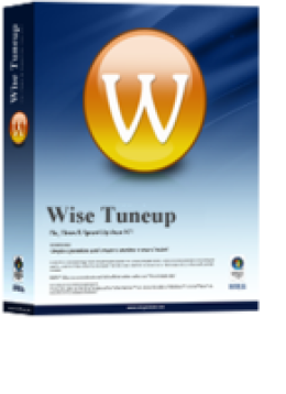 Wise Tuneup : 1-PC / 1-Year